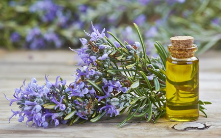 Rosemary essential oil in a small glass vial and plant with flowers