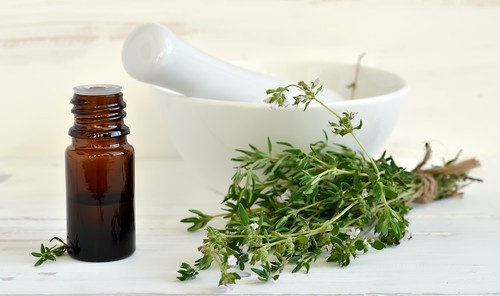 Essential thyme oil in a dark glass bottle. Freshly gathered Thyme herb