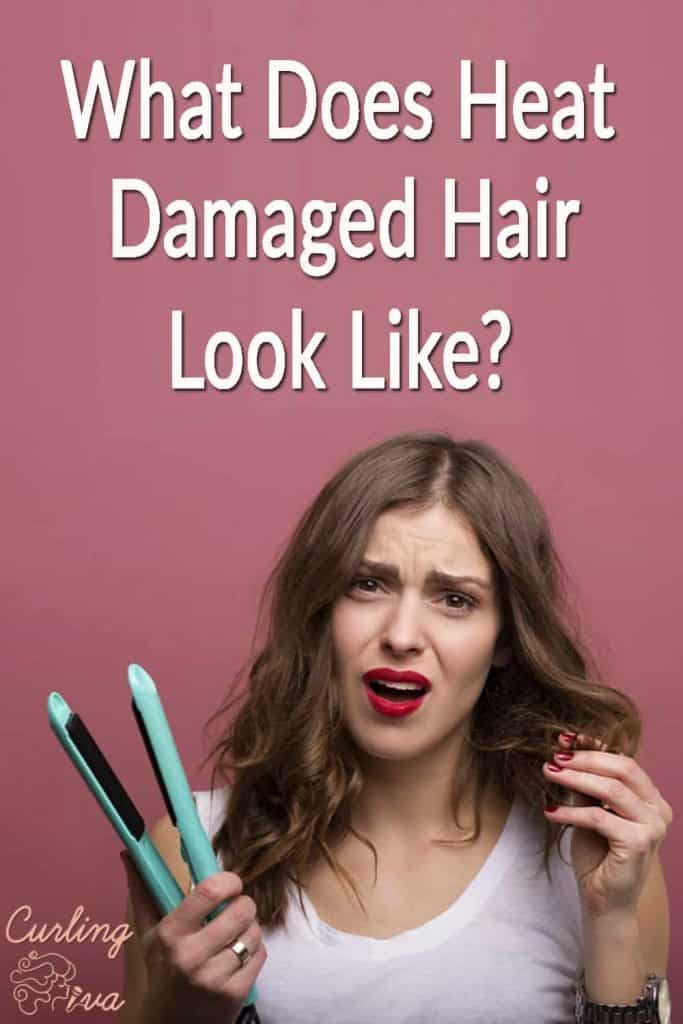 PIN for What does heat damaged hair look like